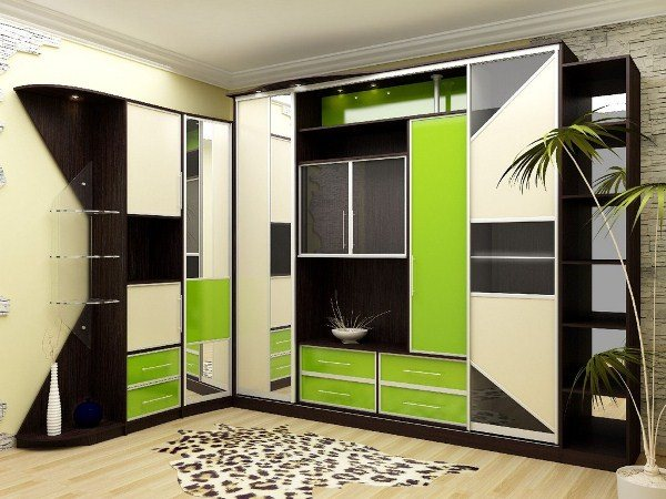 шкафы купе фото дизайн в зале