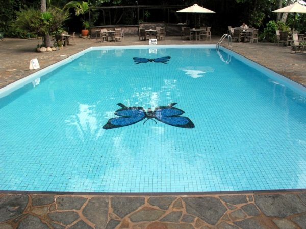 мозаика для бассейна фото 15