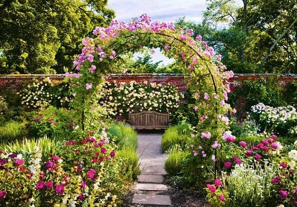 арка для розы своими руками фото 26