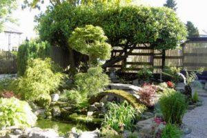 сад в японском стиле фото 13