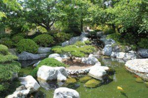 сад в японском стиле фото 2
