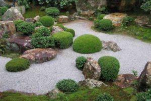 сад в японском стиле фото 29