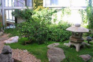 сад в японском стиле фото 35