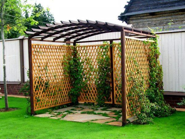 интерьер сада с перголой фото