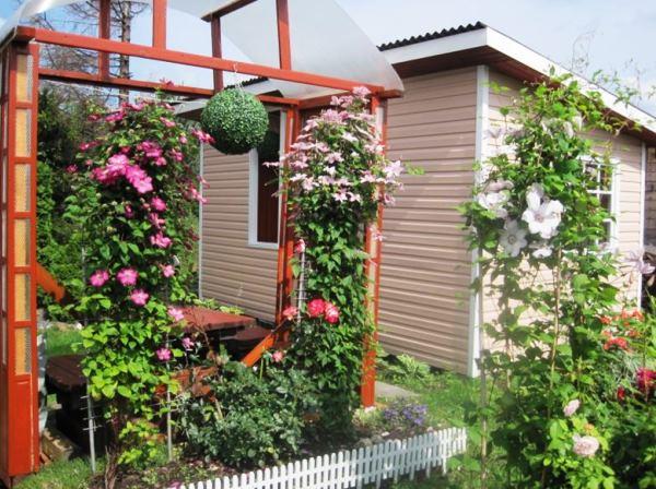 Красивые шпалеры для вьющихся растений фото
