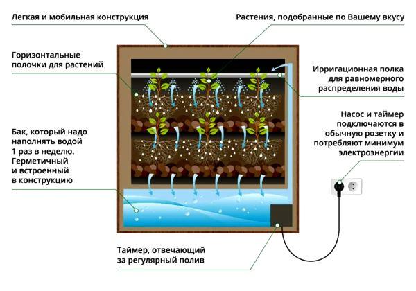 фитомодули для вертикального озеленения фото 12