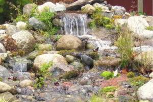 фонтан на даче фото