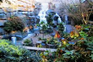 водопад фото 24