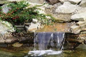 водопад фото 33