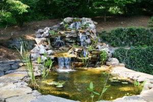 водопад фото 39