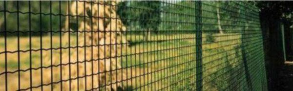 забор из сварной сетки с полимерным покрытием фото 3