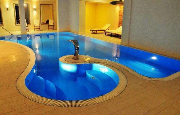 дизайн бассейна в частном доме фото 3