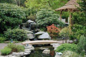 сады в японском стиле фото