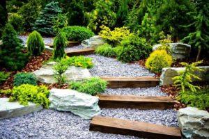 сад в японском стиле фото 11