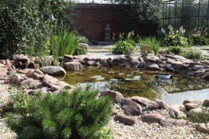 сад в японском стиле фото 32