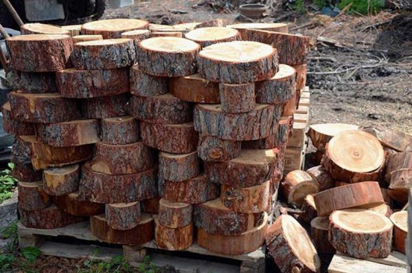 Спилы дерева для дорожек фото
