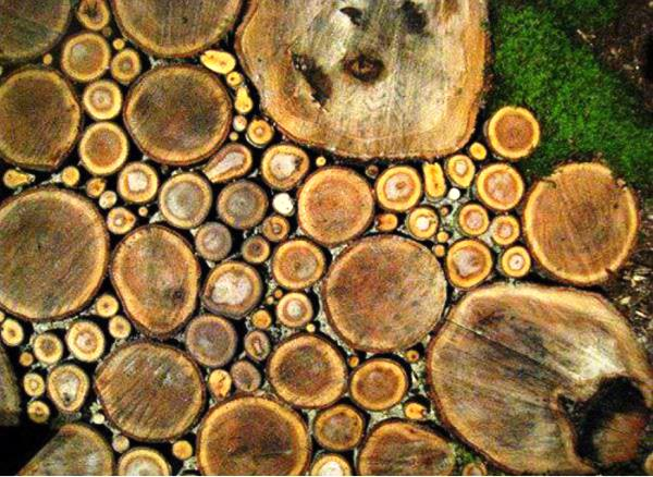 Спилы дерева для дорожек фото 5