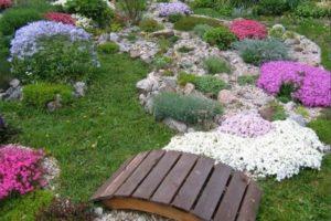 мостик в саду фото 13