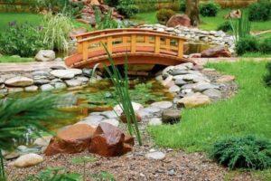 мостик в саду фото 26