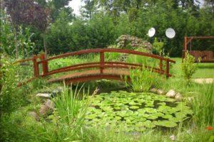 мостик в саду фото 28