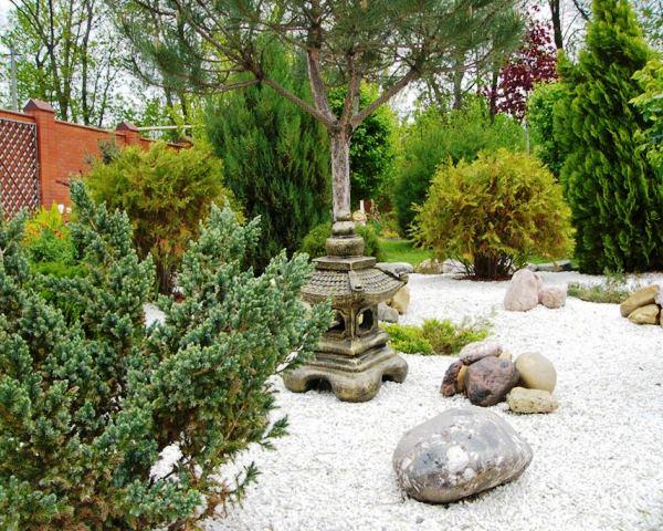 Японский сад фото на даче