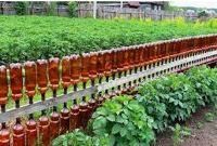 забор из пластиковых бутылок для сада и огорода фото и описание