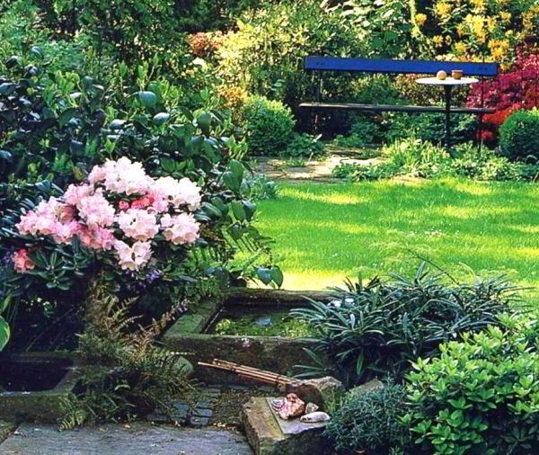 цветущие кустарники для сада фото 4