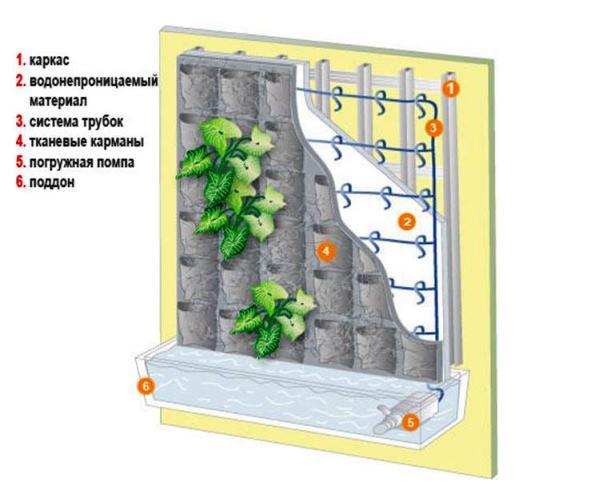 фитомодули для вертикального озеленения фото 11
