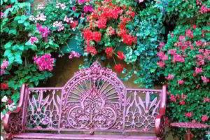 скамейки кованые фото 20