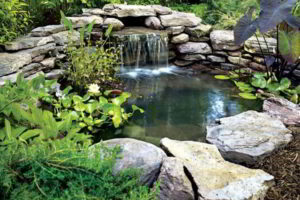 водопад фото 11